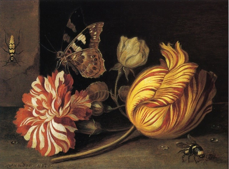 Study of Flowers and Insects Balthasar van der Ast